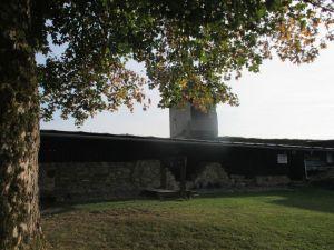 Za středověkou zříceninou hradu do Brumova - 893496 - Hrad Brumov