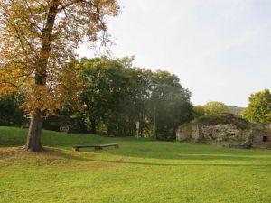 Za středověkou zříceninou hradu do Brumova